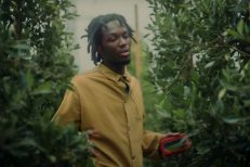 Saba-Mrs-Whoever-video