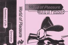 World-Of-Pleasure-World-Of-Pleasure