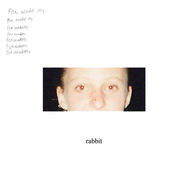 Fox Academy - rabbit