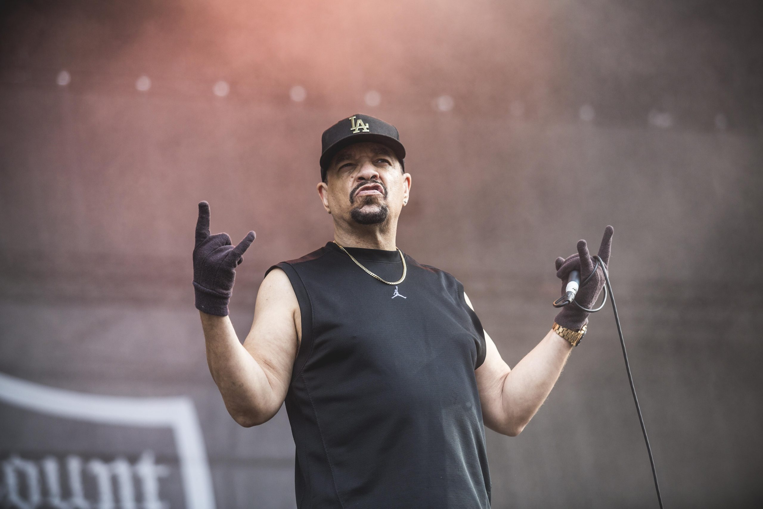 We've Got A File On You: Ice-T