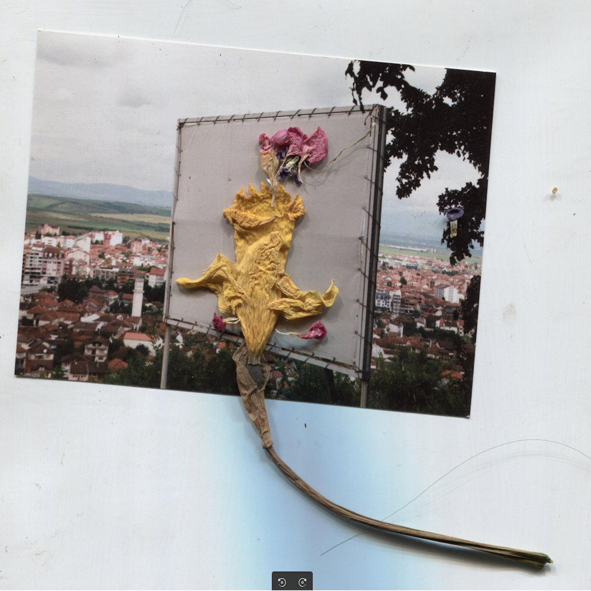 """Devon Welsh's Band Belave Beats Kings Of Leon To The Punch As """"First Band To Release An Album As An NFT"""" - Stereogum"""