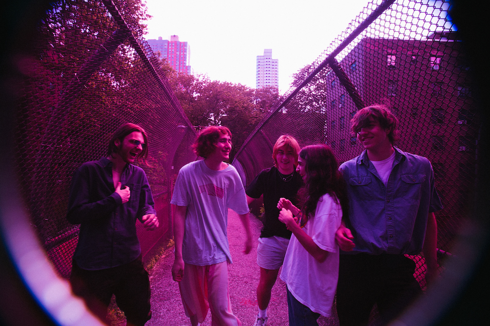 Band To Watch: Geese