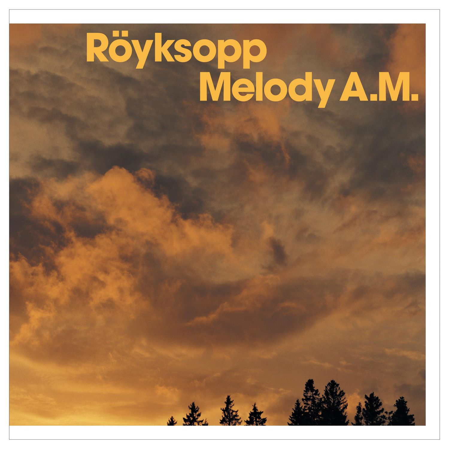 Melody A.M. Turns 20