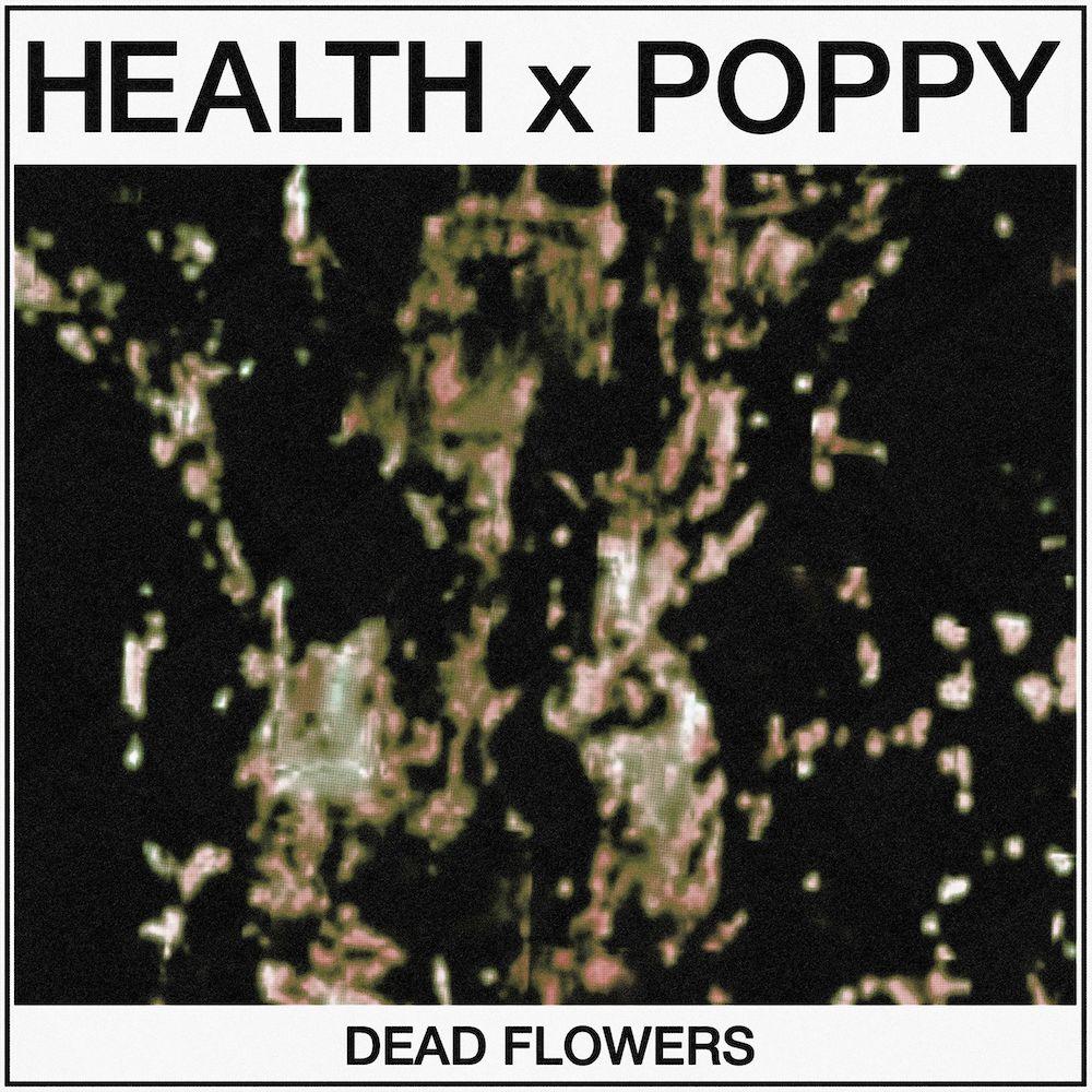 """HEALTH & Poppy – """"Dead Flowers"""""""